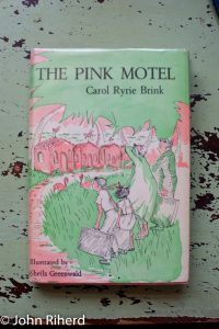 Photo of the book The Pink Motel
